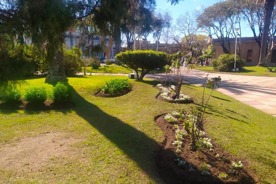 Concurso Parques y Jardines