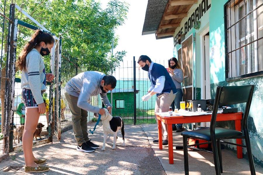 Comenzo un operativo para aplicar antiparasitarios a perros y gatos